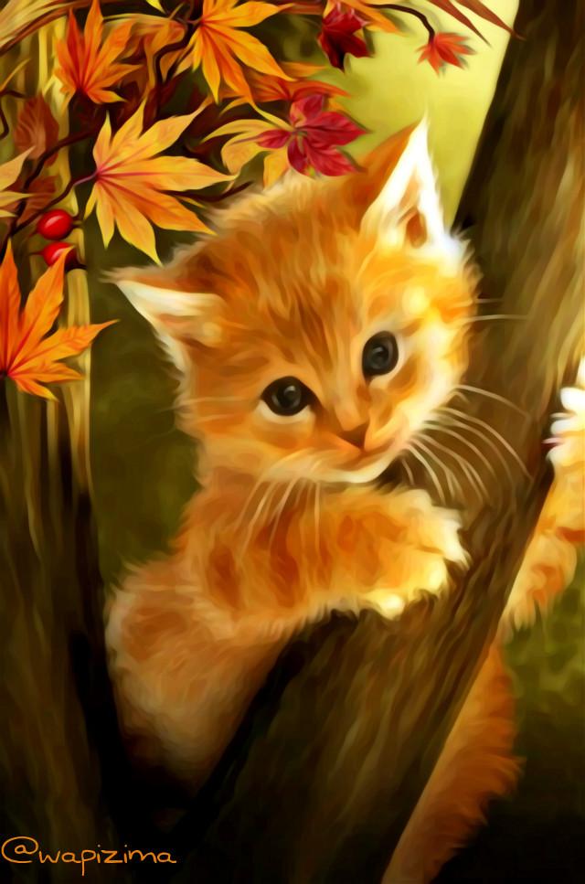 #wapautumnvibes   #autumnvibes   #oilpaintingeffect  #cat #autumnleaves  #autumncolors