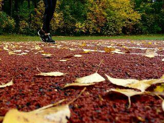 training athletics trackandfiled running sports