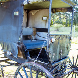 carriage buggy vintagefinds sunnyday photography