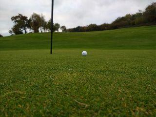 freetoedit golf golfcourse golfball