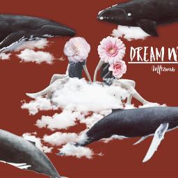 coverart picsart becreative whale cloud