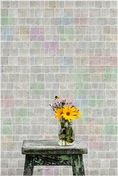 freetoedit wall flower colors edit