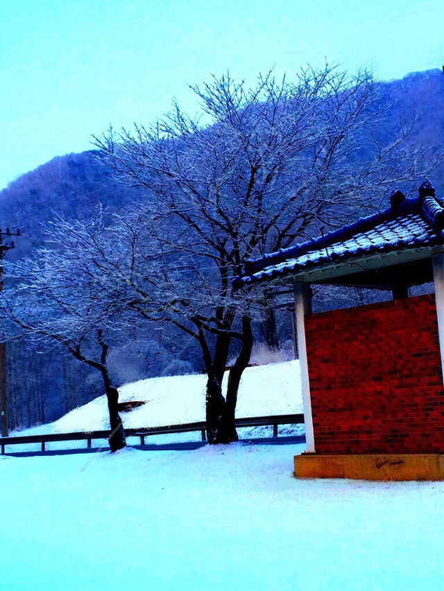 Korean Winter Wonderland