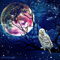 magiceffect wizardingworld moon createdwithpicsart clipart